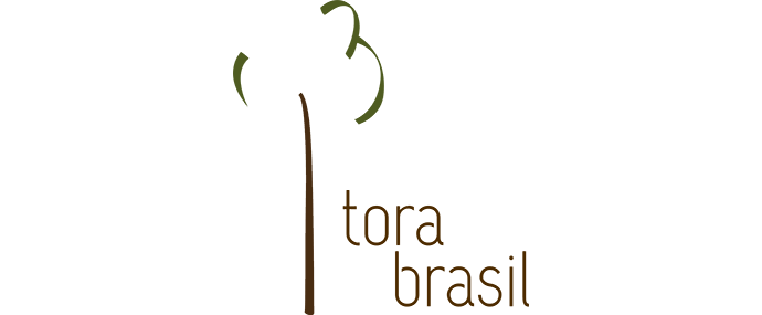 logo_torabrasil2